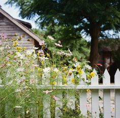 Keep things from feeling too messy and chaotic by lining the perimeter of your garden with a classic white-picket fence. Plus, there's nothing more beautiful than bright flowers peeking out from in between the crisp white fence slats.   - HouseBeautiful.com