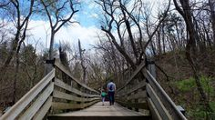 Starved Rock State Park with a toddler // #FamilyTrails