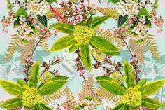 Manuka and Lemonwood by Jane Galloway. Wall Art print from The Little Art Gallery, Tairua, Coromandel, NZ Nz Art, New Zealand, Wall Art Prints, Original Artwork, Art Gallery, Plants, Artists, Art Museum, Artist