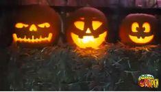 Diy Halloween Games, Outdoor Halloween, Halloween Party Decor, Halloween Gifts, Halloween Nails, Halloween Pumpkins, Halloween Costumes, Women Halloween, Girl Halloween