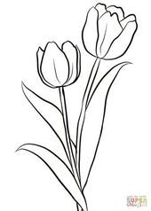 Two Tulips coloring page from Tulip category. Select from 28148 printable crafts. - Two Tulips coloring page from Tulip category. Select from 28148 printable crafts of cartoons, natur - Printable Flower Coloring Pages, Coloring Pages Of Flowers, Tulip Drawing, Flower Sketches, Printable Crafts, Pencil Art Drawings, Tattoo Drawings, Fabric Painting, Tulip Painting