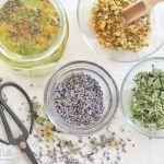 Chill Out Herbal Tea - The Hip Homestead tea benefits tea blends tea garden tea photography tea recipes Herbal Tea Benefits, Herbal Teas, Zucchini Lasagna Rolls, Calming Tea, Tea Plant, Organic Living, Natural Living, Tea Blends, Crunches