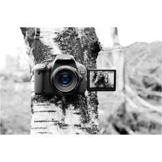 I can't wait!!!!!    Canon 600D