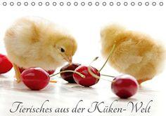 Tierisches aus der Küken-WeltAT-Version  (Tischkalender 2... https://www.amazon.de/dp/3664613570/ref=cm_sw_r_pi_dp_GoMtxbQ40PQJM