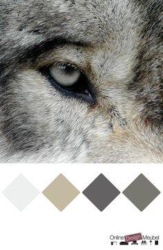 kleurenpalet grijstinten | kleurinspiratie | grijs | wolf | color schema