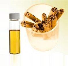 Cinnamon Bark Essential Oil – Pure Cinnamon Bark Oil Wholesale Suppliers and Manufacturers, India