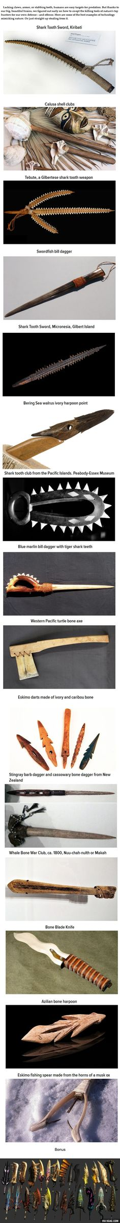 15 Human Weapons Made from Animal Weapons