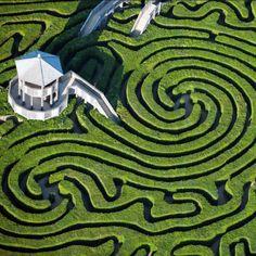 longleat hedge maze whitshire england