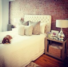 Everything: exposed brick, bed, pillows, nightstand, pupppppy