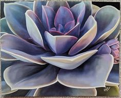 23 new ideas for succulent painting acrylic artists Succulents Wallpaper, Succulents Drawing, Succulents Painting, Growing Succulents, Plant Painting, Painting Art, Succulent Wall Art, Succulent Planters, Succulents Garden