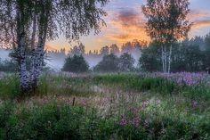 Фотограф evgeni erokhin - В час рассвета #1858484. 35PHOTO