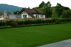 It looks and feels like natural grass, and it stays green year round. Pro-Green Synthetic Grass Lawn