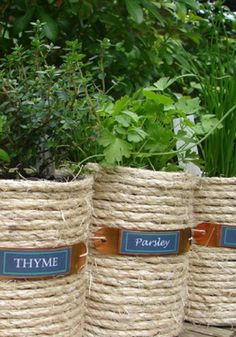 Wrapped coffee cans repurposed into herb pots. Love this. Would look nice in the kitchen.