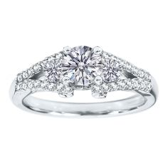 Round Diamond Double Pave Band  Engagement Ring 0.50 tcw in 14K White Gold