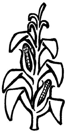 Coloring Page Tomato Plant Coloring Pages Tomato Plants Tree