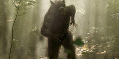 Visit the grave of the killer werewolf that terrorized rural Georgia
