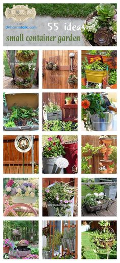Since I plan to kove intoa condo two years from now, I am going to have to get use to container gardening