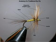 Anatomy of a traditional dry fly