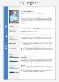 CV template 2029 om te downloaden