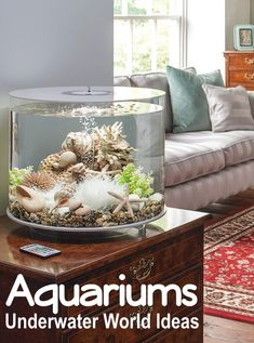 The possibilities are endless how you can bring the ocean underwater world to your home with an aquarium tank. From small to large, to designer inbuilt, to showpiece tanks that don't even have fish. These aquarium design and decor ideas & shopping sources will get you started! Featured on Completely Coastal.