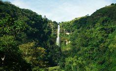 """""""CAPURGANÁ, PARAÍSO VÍRGEN""""... En la frontera entre Panamá y Colombia, existe un lugar donde la mano del hombre apenas se percibe, y donde la naturaleza llenará tu mente"""