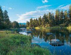 The Resort at Paws Up (Montana/Greenough) - Resort Reviews - TripAdvisor