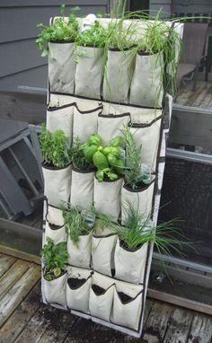 shoebag herb garden