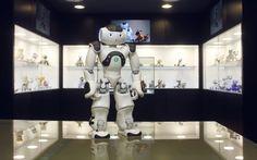Perros electrónicos y réplicas famosas en el Museo del Robot. Madrid.