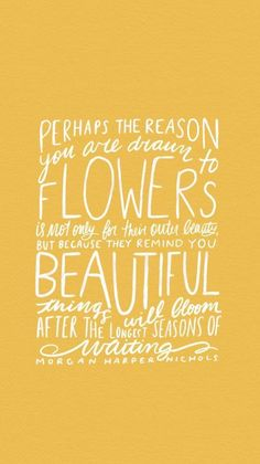 Perhaps the reason you are drawn to flowers is not only for the outer beauty but because they remind you beautiful things will bloom after the longest seasons of waiting -Morgan Harper Nichols New Quotes, Happy Quotes, Bible Quotes, Words Quotes, Wise Words, Quotes To Live By, Positive Quotes, Funny Quotes, Inspirational Quotes