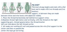 Fig Knot
