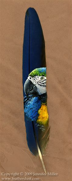 Blue and Gold Macaw Portrait by ~Nambroth on deviantART ~ that is beautiful!!