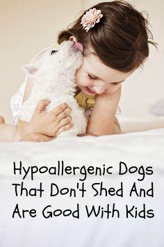 Looking for hypoallergenic dogs that don't shed and are good with kids? Yes, they do exist! Check out our list of our favorite breeds that fit the criteria.
