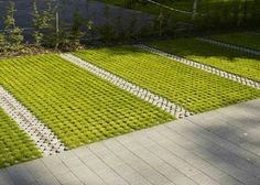I'm not sure drivers would be skillful enough to always keep between the lines, but what a lovely idea. Landscape And Urbanism, Landscape Design, Garden Design, Contemporary Landscape, Urban Landscape, Permeable Driveway, Driveways, Walkways, Grass Pavers