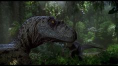 Director Colin Trevorrow has revealed that 'Jurassic World' will pick up in real time 22 years after 'the horrific events' depicted in 'Jurassic Park'. Jurassic World Set, Jurassic Park Series, Jurassic World Dinosaurs, Jurassic World Fallen Kingdom, Dinosaur Images, Dinosaur Pictures, Dinosaur Art, Dinosaur Time, Illustration Photo