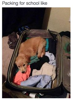 Trying to fit everything in: | 26 Pictures That Are Too Real For People Going Back To College