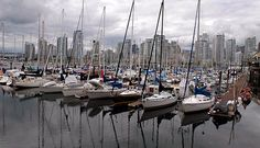 granville island, local market and brewery.  get there via water taxi