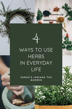 Herbs are fun to grow, but even better to use. There are so many ways we can use herbs in our everyday life. We can make them into herbal teas, use herbs in cooking, make medicinal herb products, and make different herbal crafts to enjoy day after day. Indoor herbs | Outdoor Herbs | Growing herbs indoors | Growing herbs outdoors | Growing herbal tea | Medicinal Herbs | How to use herbs | How to dry herbs | How to preserve herbs Herb Gardening, Container Gardening, Herbal Remedies, Natural Remedies, Growing Herbs At Home, Preserve Herbs, Indoor Herbs, Herbal Teas, Tea Blends
