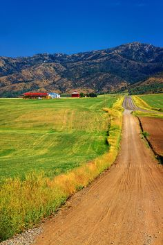 Country highway (Swan Valley, Idaho)
