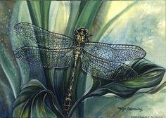 Dragonfly II by Kym Garraway