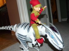 Bubba Louie rides the Dino!