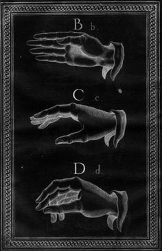 Chaosophia218 Sign Language Alphabet, Diagram Design, Writing, Signs, Reading, Movie Posters, Art, Craft Art, Novelty Signs
