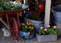 Ranch Farmgirl blog - junk garden containers.