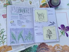 """stvdyuibes: """"Wow this week's bujo spread matches my old encyclopedias (ft. a new cactus) """""""