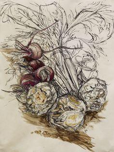 Natasha Clutterbuck - drawings Celeriac  Beetroot