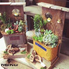 女性で、のig⇒pukupukupk/リメ缶/JUNK GARDEN/庭/ガーデニング…などについてのインテリア実例を紹介。「小窓とクルカラ付の寄せ植え」(この写真は 2016-10-26 19:32:05 に共有されました)