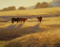 Late Summer Sun by Laurie Kersey Oil ~ 16 x 20