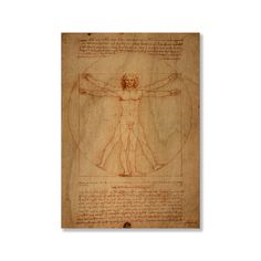 Gallery Direct Leonardo Da Vinci's 'Vitruvian Man' Print on (Small - 19 inches high x 13 inches wide)