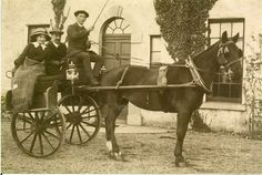 The Leonards of Athenry House? Old Photographs, Me On A Map, Horses, History, Animals, Historia, Animales, Animaux, Old Photos
