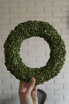 split pea wreath.  Great for christmas decor on a budget.