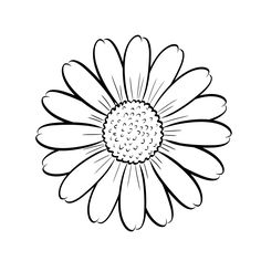 Adult Coloring Pages Sunflower from Printable Sunflower Coloring Pages. This funny sunflower shines all over your face. What she is missing now are bright colors. But you can certainly help her with that. Just print out th. Daisy Drawing, Simple Flower Drawing, Flower Drawing Tutorials, Sunflower Drawing, Sunflower Coloring Pages, Cute Coloring Pages, Adult Coloring Pages, Coloring Books, Tattoo Drawings
